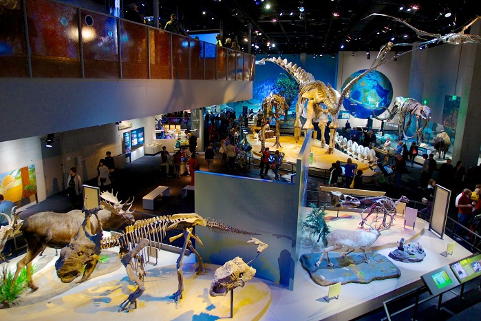 34808-Perot-Museum-Of-Nature-And-Science